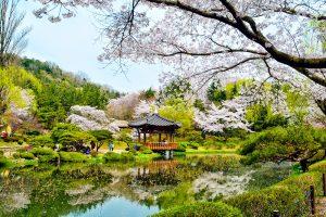 Vọng lâu Bomun Hàn Quốc với vẻ đẹp hài hòa với thiên nhiên