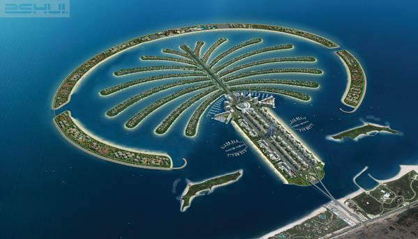 Đảo cây Cọ có một bờ biển dài với bãi cát trắng sạch và mềm mại, hấp dẫn với những môn thể thao cảm giác mạnh