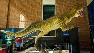 Chú khủng long niên đại hàng trăm năn ở bảo tàng Tây Úc