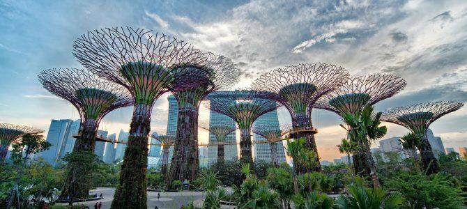 Vé máy bay Singapore Airlines từ Sài Gòn đi Changi Singapore